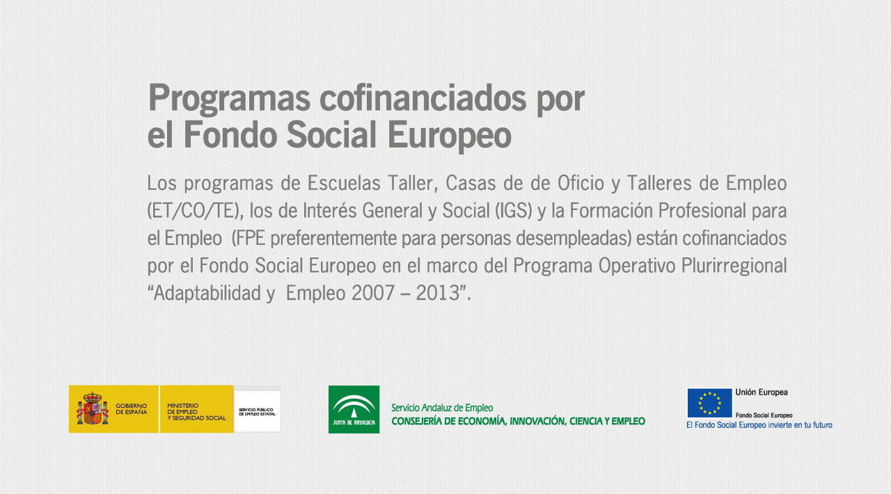 Cofinanciacion Fondo Social Europeo